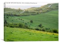 Ivinghoe Hills in May, Canvas Print
