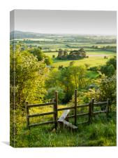Portrait view of Aldbury Nowers, Tring; seen from , Canvas Print
