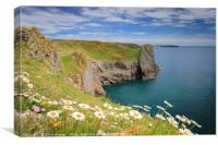 Spring flowers at Lydstep headland near Tenby Pemb, Canvas Print