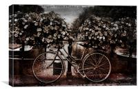 Only in Amsterdam, Canvas Print