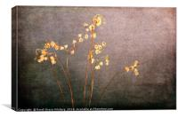 Faded From The Valley, Canvas Print