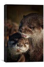 Mum And Baby Otter, Canvas Print