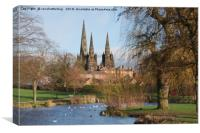 Lichfield Cathedral Beacon Park, Canvas Print