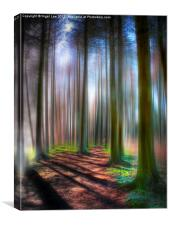 The Tall Trees, Canvas Print