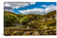 Haytor Quarry Dartmoor     , Canvas Print