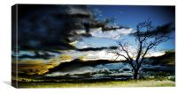 The Calm Before the Storm, Canvas Print