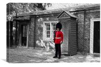 Coldstream Guard at Clarence House, Canvas Print
