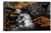 Autumn Colurs at Lumsdale, Canvas Print