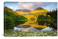 Torren lochan, Glencoe, Scotland, UK, Canvas Print