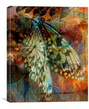 Butterfly Wings, Canvas Print