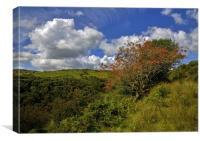 Exmoor At Its Best, Canvas Print