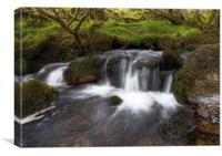 Summer Waterfall on Exmoor, Canvas Print