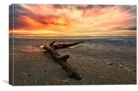Low tide at sunset., Canvas Print