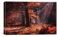 Fresh Autumn Woodlands, Canvas Print