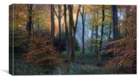 Early Autumn Morning, Canvas Print
