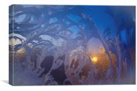 frost flowers at sunrise, Canvas Print