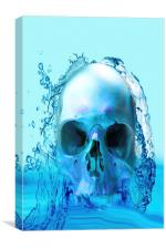 Skull in Water, Canvas Print