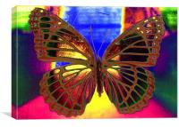 Angel Butterfly, Canvas Print