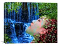 Fountain of Youth , Canvas Print