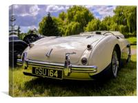 1955 Austin Healey, Canvas Print