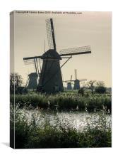 Windmills, Canvas Print