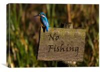 No Fishing, Canvas Print