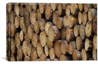 Wood pile, Canvas Print