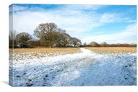 Snow covered field, Canvas Print