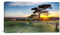 Sunset at Bratley View in the New Forest, Canvas Print