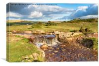 The Grimstone and Sortridge Leat on Dartmoor, Canvas Print