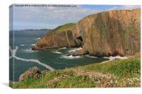 Baggy Point in the Spring, Canvas Print