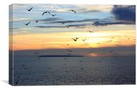 Seagulls against the Sunset, Canvas Print