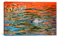 Swimming in Colourful Water, Canvas Print