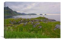 A Summer Night in Hovden, Canvas Print