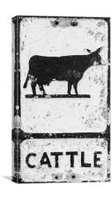 Cattle Sign, Canvas Print