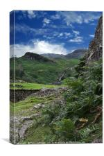 Easedale Valley, Canvas Print