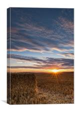 Haymaking Sunset, Canvas Print