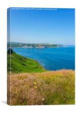 Runswick Bay Summer, Canvas Print