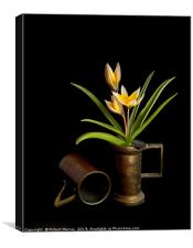 Tulip in old copper cup, Canvas Print
