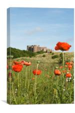 Poppies and Bambugh Castle., Canvas Print