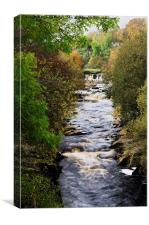 A View of the River Swale in North Yorkshire, Canvas Print