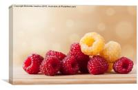 ripe red and golden raspberry fruits, Canvas Print