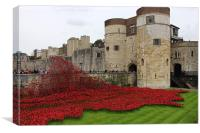 Tower of London World War 2, Poppy Tribute, Canvas Print