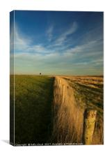 The path to Cley, Canvas Print