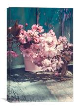 Beautiful japanese cherry flowers in the vase, Canvas Print