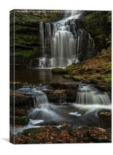 Scaleber Falls, Autumn, Canvas Print