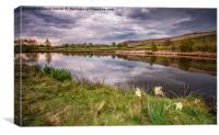 Distant Stoodly Pike, Canvas Print