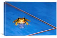A Frog in the Pool, Canvas Print