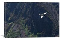 Eurofighter Typhoon flying low through the Welsh , Canvas Print