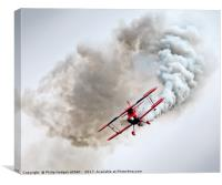Pitts at Yeovilton 2017, Canvas Print